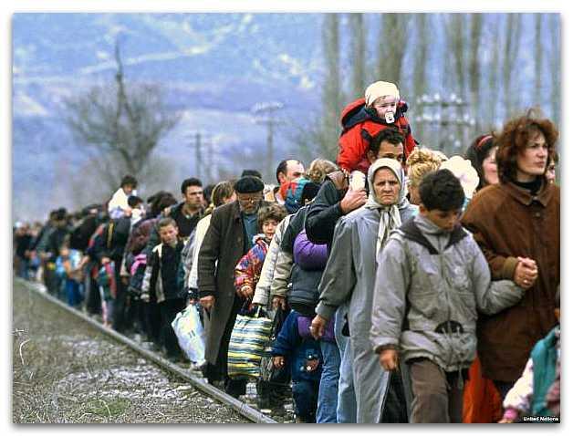 Можно ли принять на работу беженца из Украины?