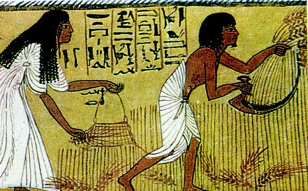 Налоги древности. За что платили наши предки?
