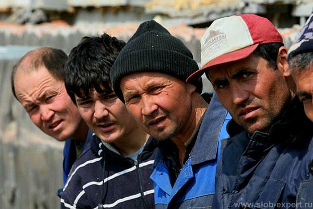 Правила трудоустройства иностранных граждан: дополнительные основания для увольнения